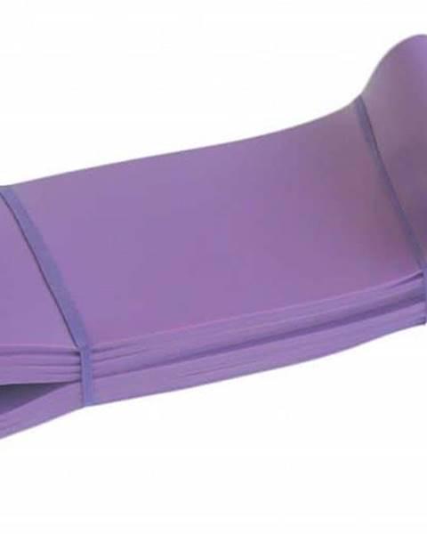 Sedco Posilovací guma odporová 104 x 8,3 CM x HEAVY AKCE