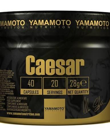 Caesar (Super kombinácia 3 adaptogénov) - Yamamoto 40 kaps.