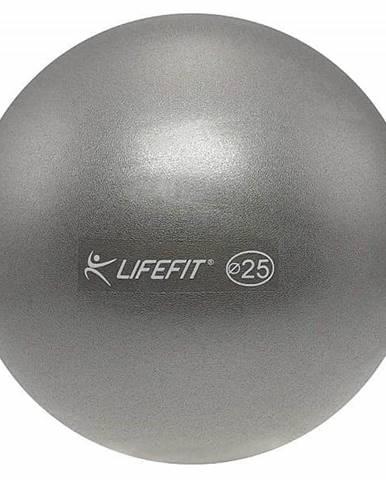 Míč OVERBALL LIFEFIT 25cm, stříbrný