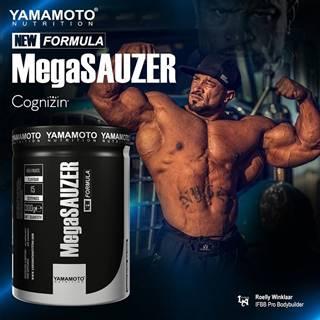 Mega SAUZER (podporuje maximálne napumpovanie) - Yamamoto 300 g Red Fruits