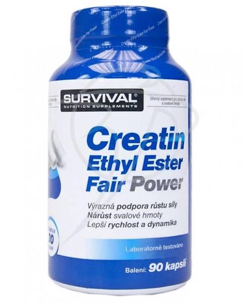 Survival Creatin Ethyl Ester Fair Power 90kps.