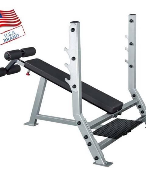 Body Solid Zaklonená profesionálna posilňovacia lavica Body Solid SDB351G
