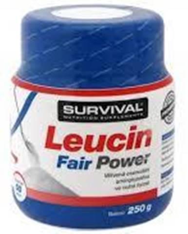 Survival Leucin Fairing Power 250 g 250g