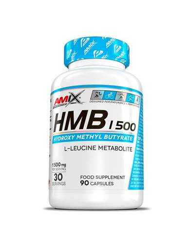 Amix HMB 1500